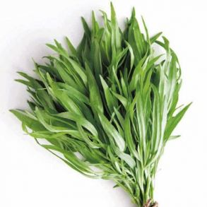 Bunched Tarragon 1kg