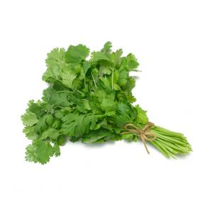 Fresh Coriander Bunches
