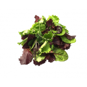 Mixed Leaf Salad (2x500g)